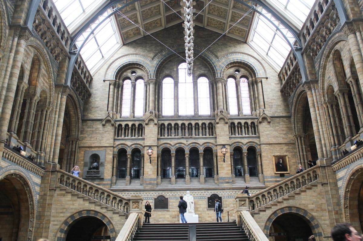 London Natural History Museum, South Kensington, interiors
