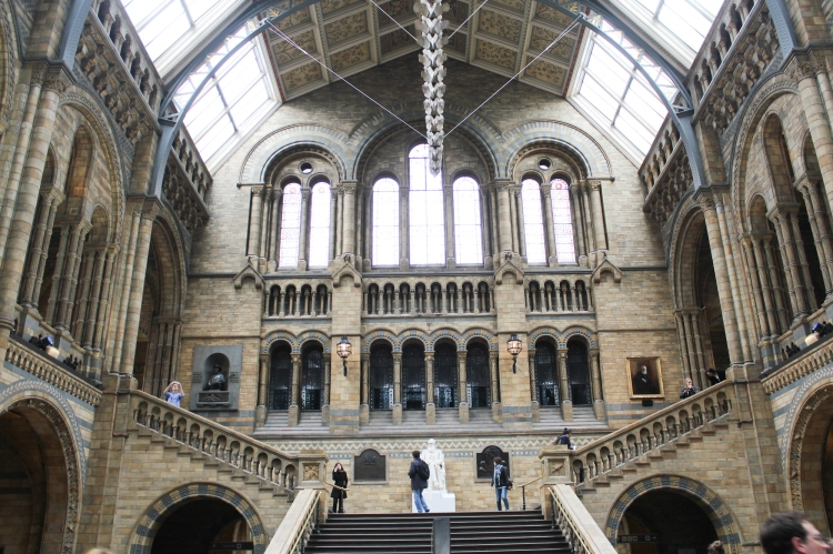 London Natural History Museum, South Kensington, interiors